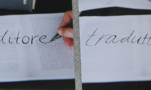 Traduttore, traditore <br> Karin Dolk (2007)