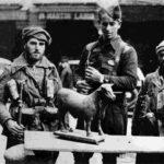Ciclo de cine de la guerra civil: <br>«Imágenes para no olvidar»