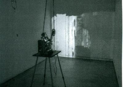 Hacia la desaparición Jesús Pueyo (2013)