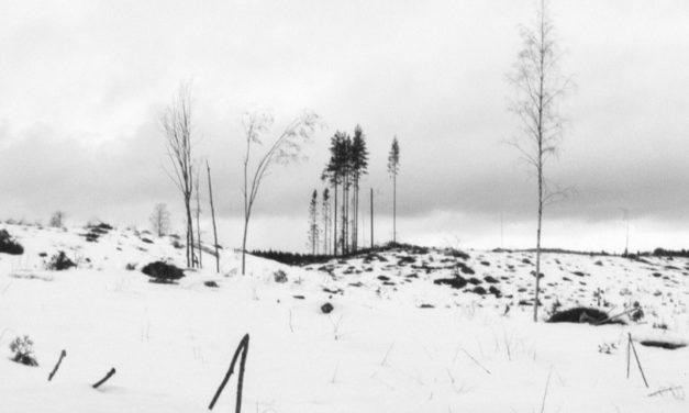 """Winterreise"" <br>Exposición de Inés García"