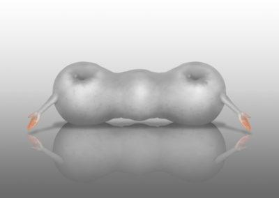 Manzanas del paraiso albinas  Bene Bergado (2000)