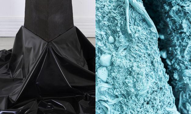 «El pozo y la pirámide» Exposición de Cristina Ramírez y Álvaro Albaladejo