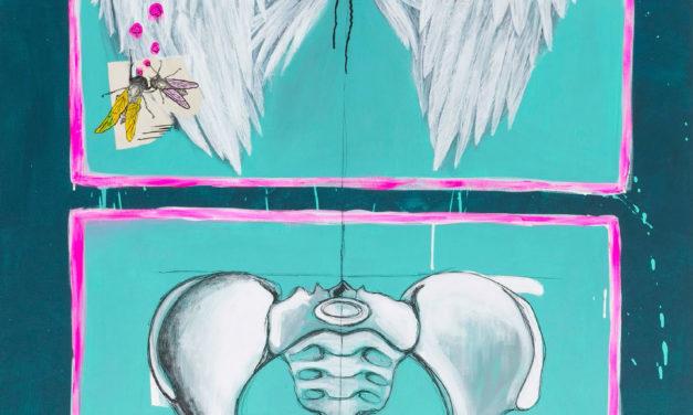 Yo no agradezco tener dos alas en la pelvis <br> Ianire Sagasti Ruiz (2013)
