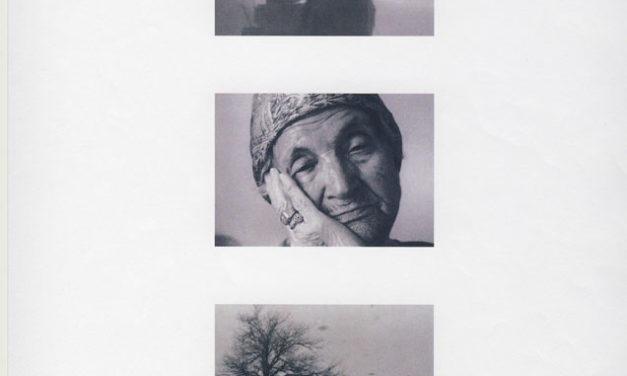 Proiekzioa:  «Del  viento  y  sus  cenizas»  +  solasaldia:  «In  medias  res:  Parte  de  un  proyecto»  Diego  Aldasororen  eskuz