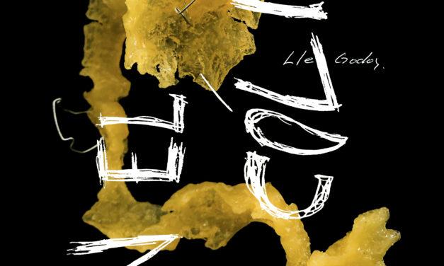 «*En el cólico», Lle Godoy