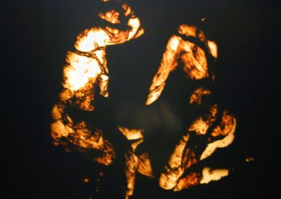 "Contagio. Serie: ""Registros internos»  Laura Valles (2004)"