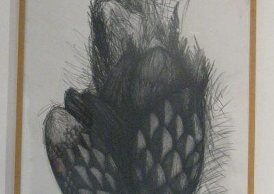 Dibujo Nº1  Lander Telletxea (2010)
