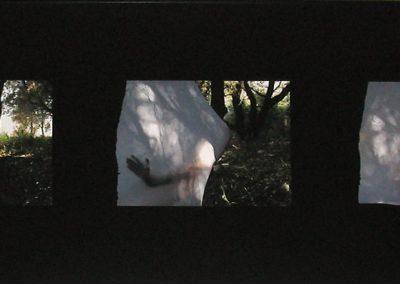 Cuando me convertí en una Crisálida  Maide Bilbao (2004)